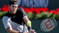 Del Potro será el rival de Federer en la final de Indian Wells